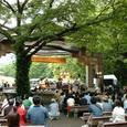 AFRICAN FESTA 2004