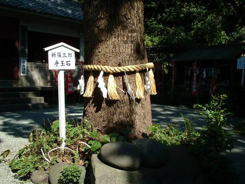 八雲神社の木と石